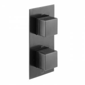Notion Vertical Concealed 2 Outlet, 2 Handle Thermostatic Shower Valve with All-Flow Function Black